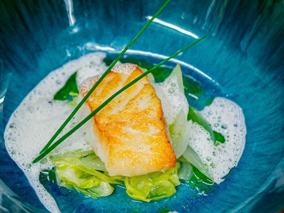 fish dish zoom caen